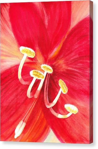Amaryllis Canvas Print - Amaryllis Flower by Irina Sztukowski
