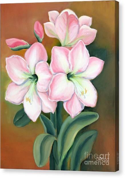 Amaryllis For Ladies Canvas Print