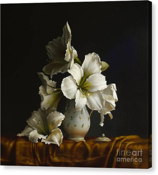 Amaryllis Canvas Print - Amaryllis On Silk by Lawrence Preston