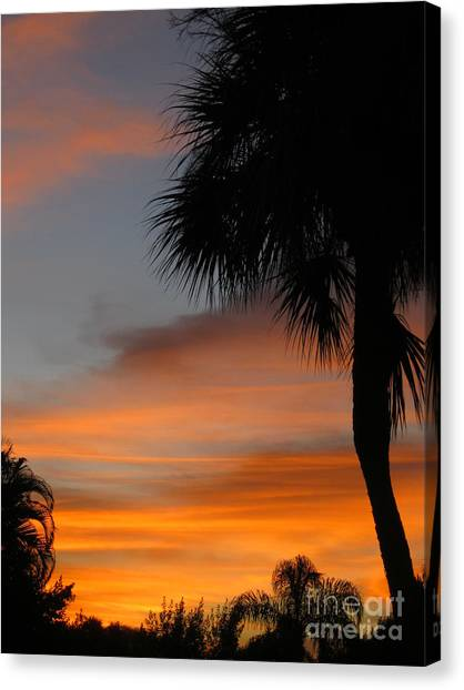 Amazing Sunrise In Florida Canvas Print