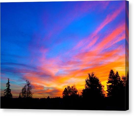 Amazing Sunset Canvas Print by Lisa Rose Musselwhite