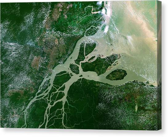 Amazon River Canvas Print - Amazon Delta by Planetobserver/science Photo Library