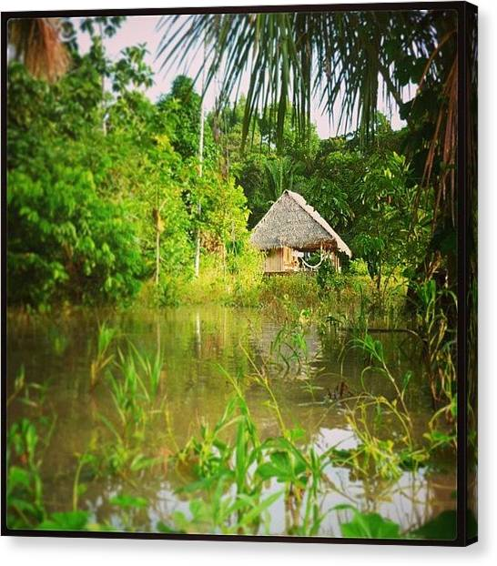 Rainforests Canvas Print - #amazonia #amazon #rainforest #peru by Inca Foto