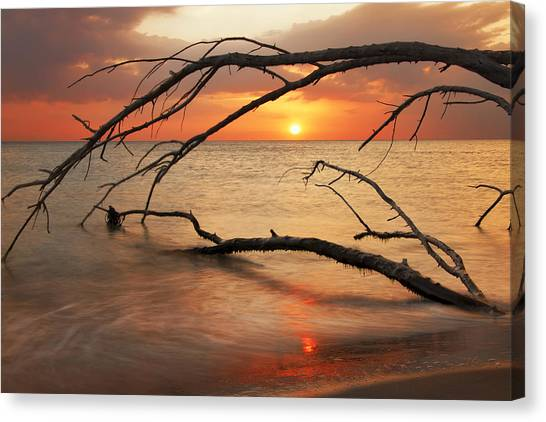 Amber Sunset Canvas Print
