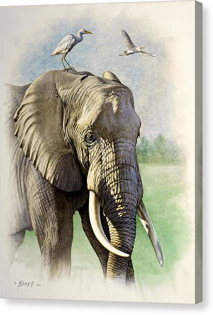 African Canvas Print - Amboseli Morning   by Paul Krapf