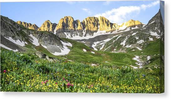 Treeline Canvas Print - American Basin Wildflowers by Aaron Spong