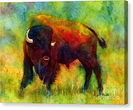 Native Canvas Print - American Buffalo by Hailey E Herrera