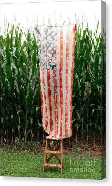 American Flag Canvas Print - American Flag And A Field Of Corn by Kim Fearheiley