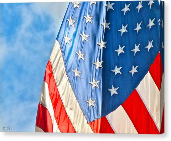 American Flag And All It's Glory Canvas Print