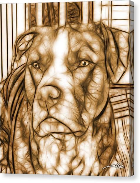American Pit Bull - Sepia Sketch  Canvas Print