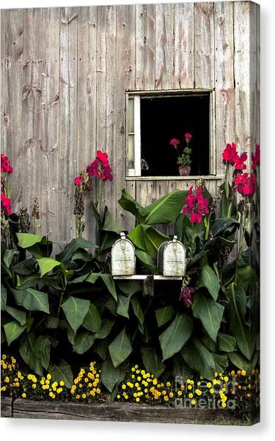 Amish Canvas Print - Amish Barn by Diane Diederich