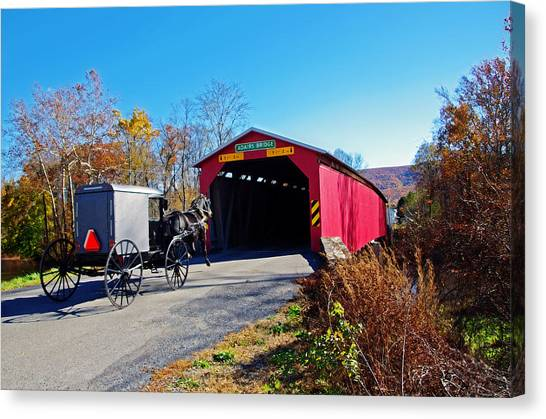 Amish Buggy Crossing Canvas Print