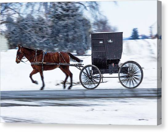 Amish Buggy In Winter Canvas Print