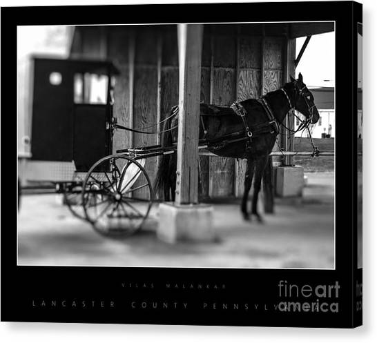 Amish Buggy Parking Canvas Print
