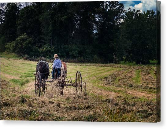 Amish Canvas Print - Amish Farming by Tom Mc Nemar