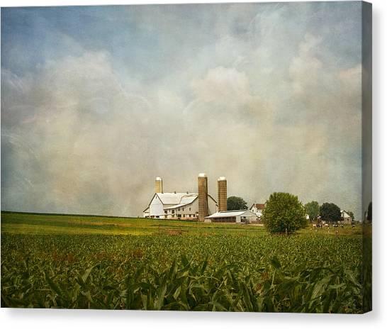 Amish Farmland Canvas Print