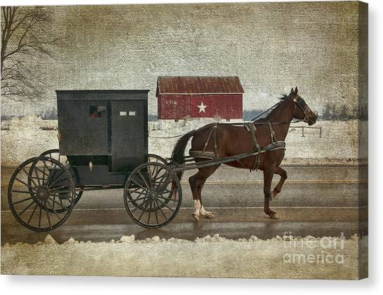 Amish Horse And Buggy And The Star Barn Canvas Print