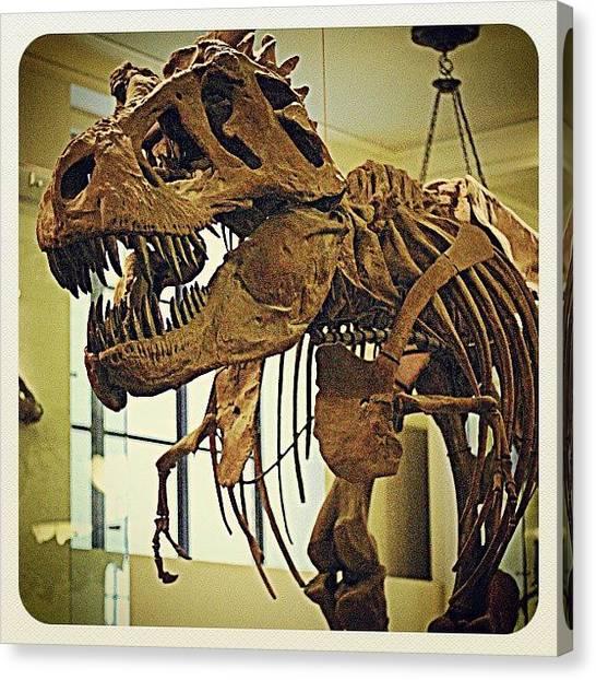 Tyrannosaurus Canvas Print - @amnh #dinosaur #museum #trex by Antonio DeFeo