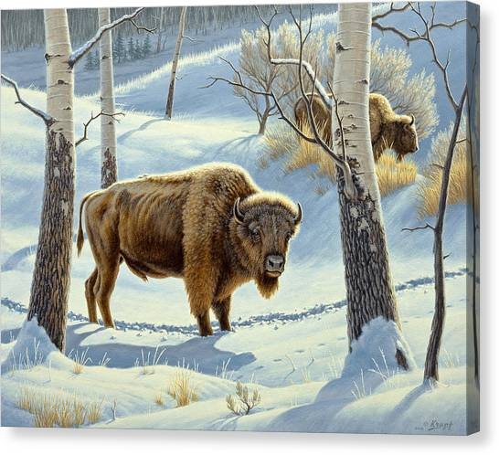 Yellowstone Canvas Print - Among The Aspens- Buffalo by Paul Krapf