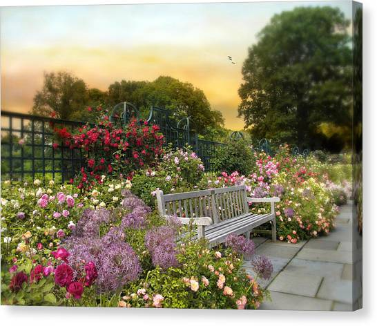 Sly Canvas Print - Among The Roses by Jessica Jenney