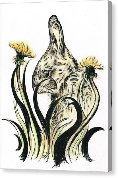 Rabbit- Amongst The Dandelions Canvas Print