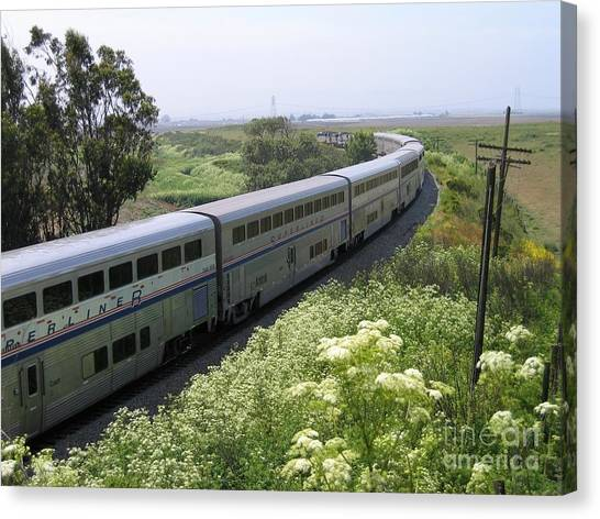 Coast Starlight At Dolan Road Canvas Print