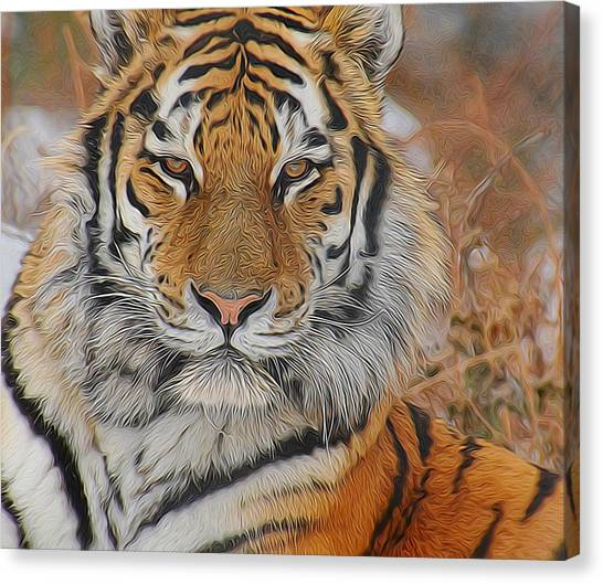 Amur Tiger Magnificence Canvas Print