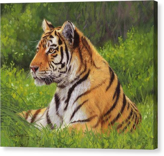 Siberian Cats Canvas Print - Amur Tiger Painting by David Stribbling