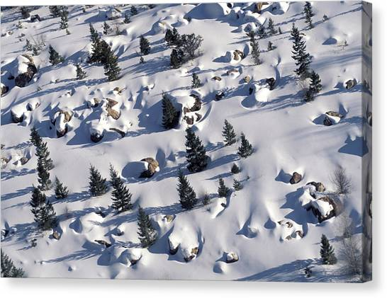 Teton National Forest Canvas Print - An Aerial View Of A Snowy Meadow by David Stubbs