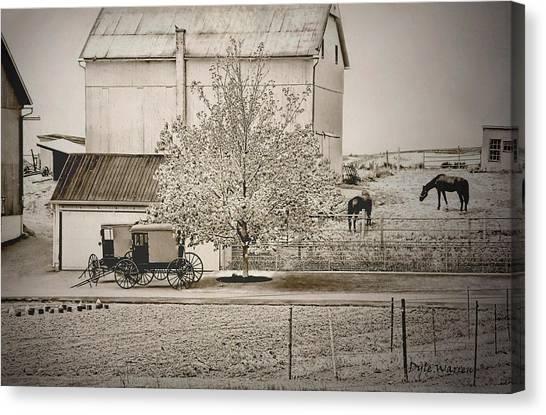 An Amish Farm In Sepia Canvas Print