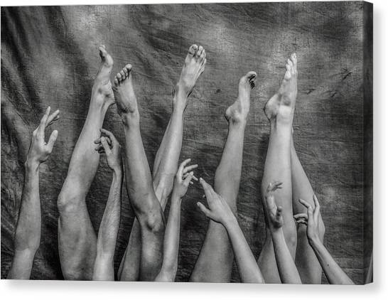 Legs Canvas Print - An Elegant Chaos. by Antonio Arcos Aka