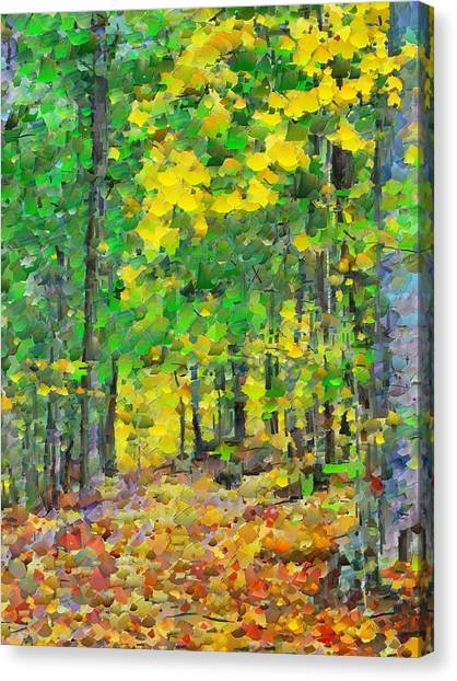 An October Walk In The Woods. 1 Canvas Print
