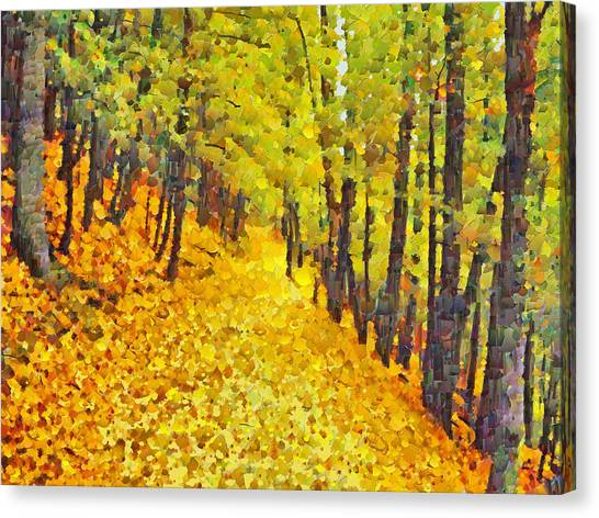 An October Walk In The Woods. 2 Canvas Print