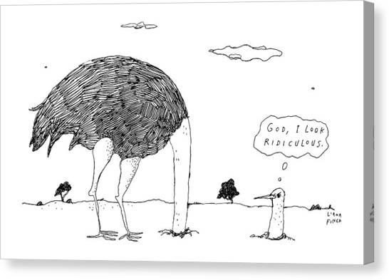 Ostriches Canvas Print - An Ostrich, With Its Head In The Ground, Peaks by Liana Finck