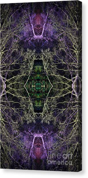 Anahata Canvas Print by Tim Gainey