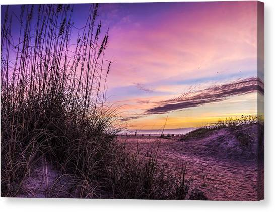 Tampa Bay Rays Canvas Print - Anastasia Dawn by Marvin Spates