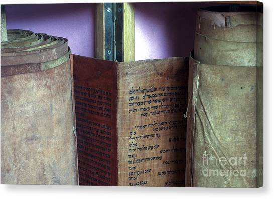 Torah Canvas Print - Ancient Torah Scrolls From Yemen  by Shay Fogelman