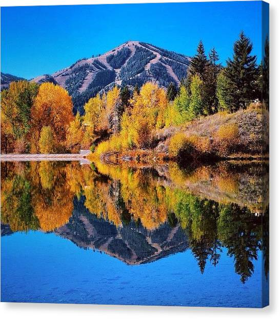Songbirds Canvas Print - And A Truly #gorgeous #fall It Has Been by Cody Haskell