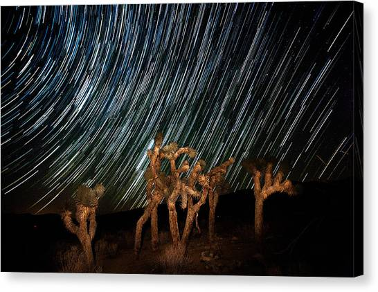 Mojave Desert Canvas Print - And They Danced by Peter Tellone