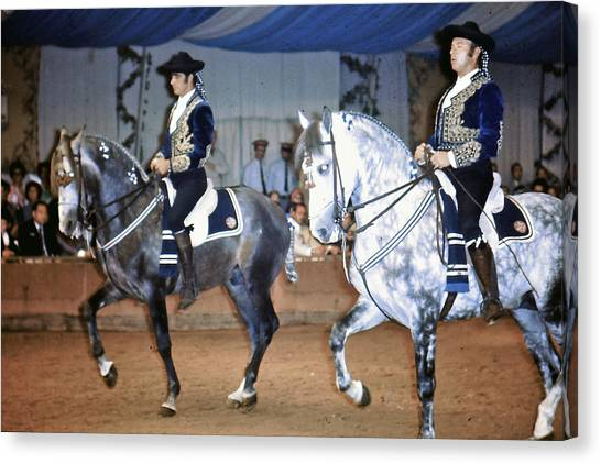 Andalusian Show Horses Canvas Print
