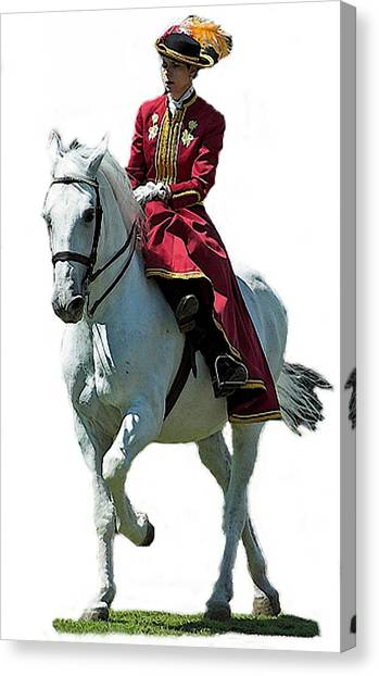 Andalusian Sidesaddle Horse  Canvas Print by Olde Time  Mercantile