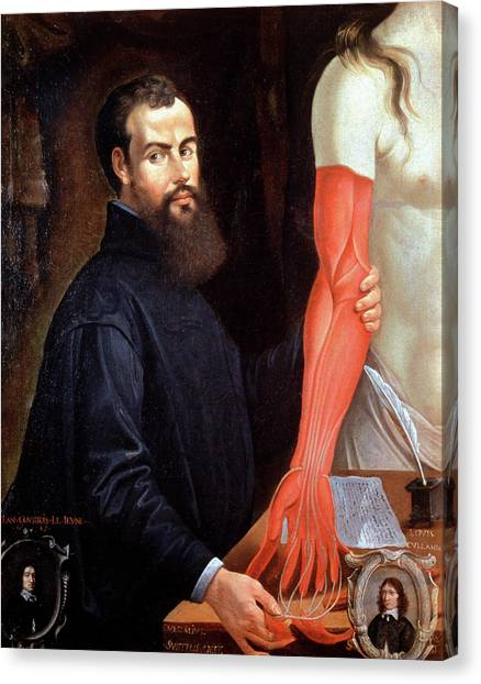 Andreas Vesalius Canvas Print by Cci Archives/science Photo Library