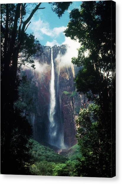 Angel Falls Canvas Print - Angel Falls, Venezuela by Ron Koeberer