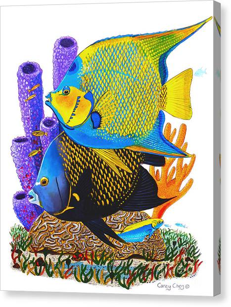 Puffer Canvas Print - Angel Fish by Carey Chen