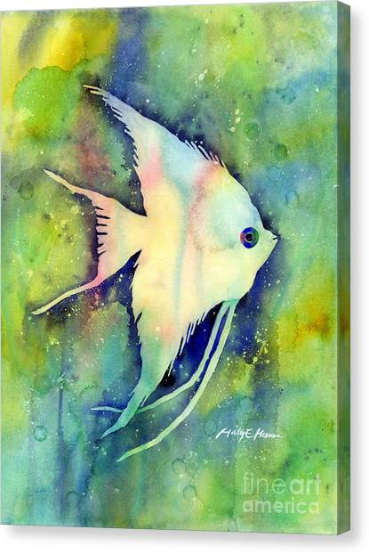 Fish Canvas Print - Angelfish I by Hailey E Herrera