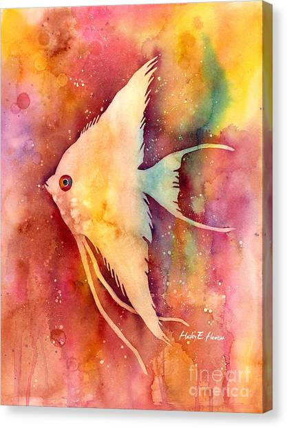 Fish Canvas Print - Angelfish II by Hailey E Herrera