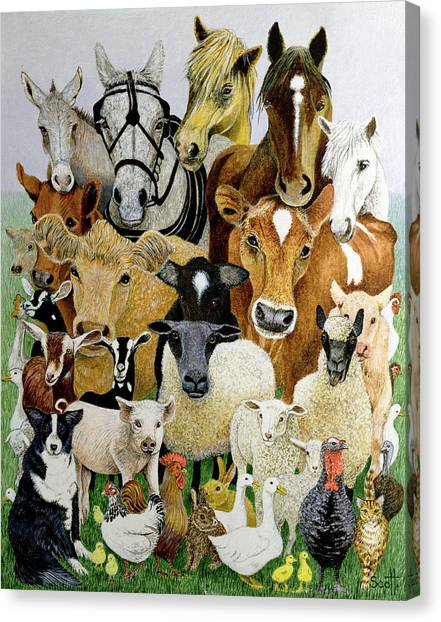 Pig Farms Canvas Print - Animal Allsorts Oil On Canvas by Pat Scott