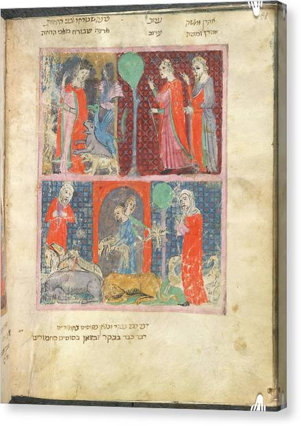 Passover Canvas Print - Animals by British Library