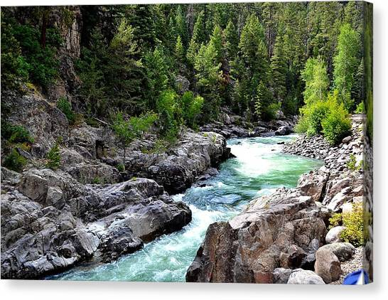 Animas River Canvas Print