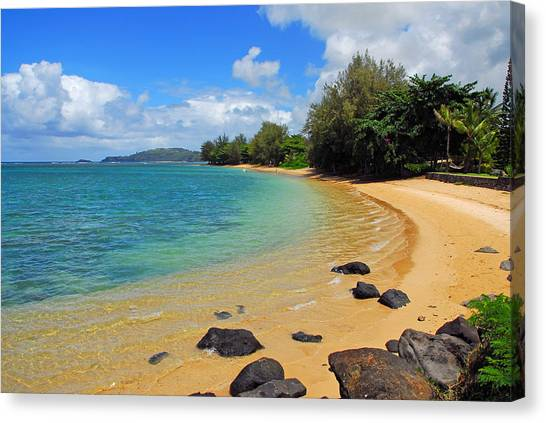 Snorkling Canvas Print - Anini Beach by Lynn Bauer